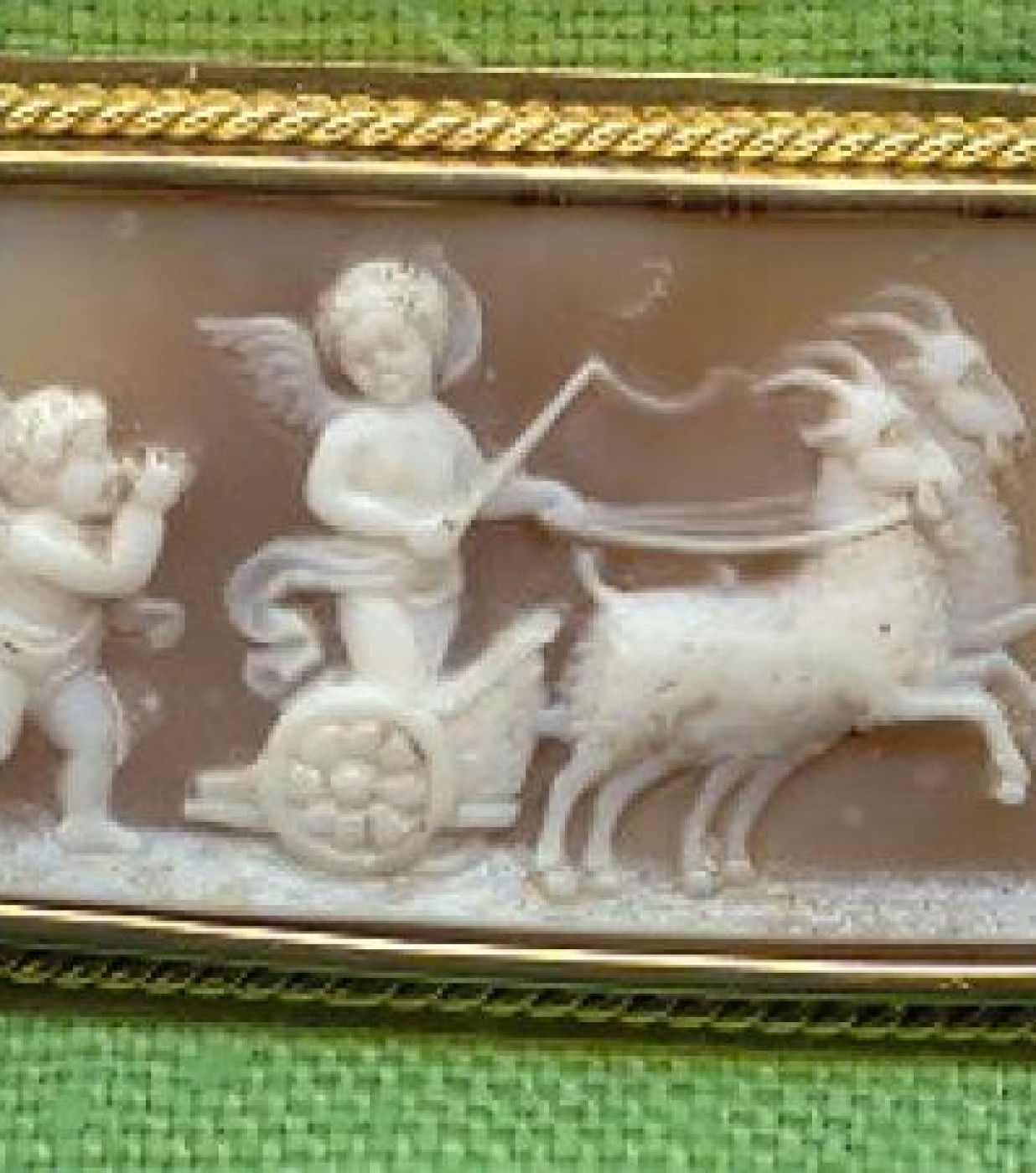 Cupids and Goats